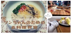 【犬の料理教室】3月のテーマは、「春にはワンちゃんも一緒にデトックス。」 @ コワーキングカフェKOKOPLUS   杉並区   東京都   日本